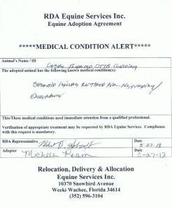 contract logan injury
